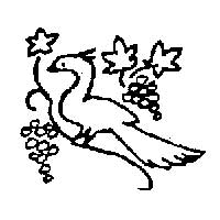 Peacock in Grape Arbor